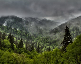 Smoky Mountain Rain Landscape Photograph Print 8x12 (or larger) Fine Art Photo Print