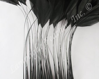"""25, stripped coque,  black, 6-8"""" long, hat feathers, fascinators per 25 feathers"""