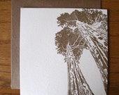 Redwoods letterpress flat notecard