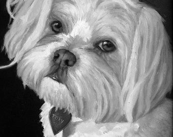 Maltese Custom Pet Portrait  -  Maltese Painting - Pet Portraits by NC