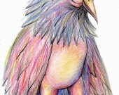 Rainbow Bird Illustration, Colored Pencil Art Print