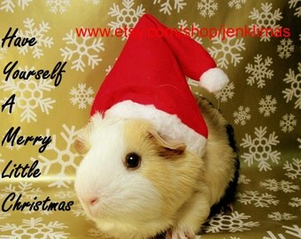 """GUINEA PIG SANTA Limited Edition Christmas Print - Have Yourself a Merry Little Christmas - 8x10"""" Portrait Photograph"""