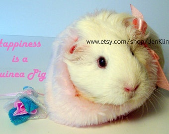 """Happiness Is a GUINEA PIG Pink Girly Portrait - Limited Edition 8x10"""" Photograph"""