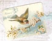 Gift Tags , Blue Bird  , Merci  , Vintage Style ,  by Bluebird Lane