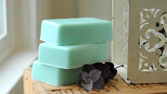 Eucalyptus Mint Soap . Homemade Soap . Shea Butter Soap . Man Soap for Men . Shaving Soap . Mens Skincare . Husband Gift . Birthday Gift