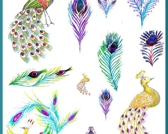 Peacocks Illustration-Download and print-Collage Sheet-300 DPI
