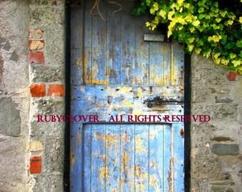 The Ivy Covered Door, IRISH Architecture Photography, Beauty of Norn Iron, Old Blue Door, Hanging Ivy, IRELAND DOOR, County Down, Irish Card