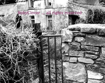 Old House near Tralee , Co. Kerry, IRELAND, Black and White, Irish Cottage, Derelict House, Abandoned, Gables, Iron Gate, Red Fence, Country