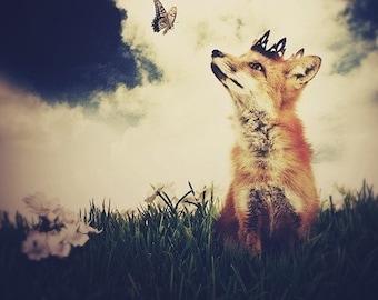 Fox Print, The Little Fox Prince, 9x12 Inch Print, Fox Art