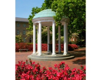 UNC Chapel Hill, Old Well and Azaleas