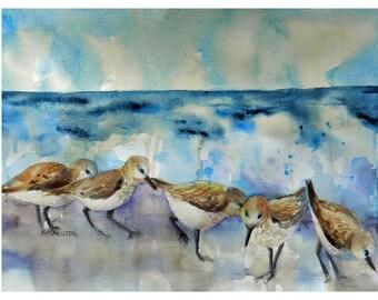 Sandpipers Watercolor Painting, Little Running Birds on the Beach, Original Beach Bird Art, Sanderlings, Beach Wall Art Decor, Plover Birds