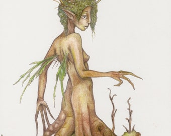 Tree Faerie Fantasy Illustration / Magical Household Art / Magical Woodland for the Rustic Home / Tree Spirit Dryad Fairy