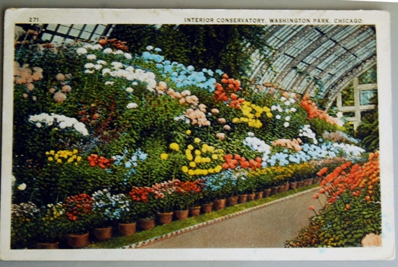 Vintage Postcard, Chicago Convervatory in Washington Park Flower Garden