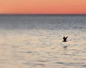 Fine Art Nature Photograph - Water Photography - Beach - Ocean - Shore - Sunset Photo - Orange - Blue - Beach House Fine Art Photography