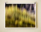 WAVY RIVER WILLOW - 8x10 Signed Fine Art Photograph