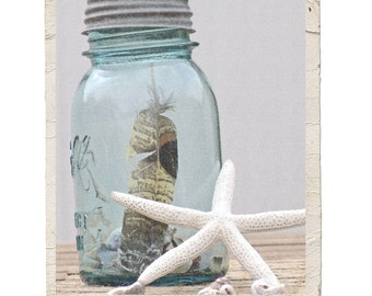 Sea Side Fine Art Still Life Photograph Nature Shell Feather Starfish Aqua Blue Vintage Style Beach Whitewashed