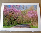 Blank Spring Greeting Card with Envelope,  Returning Home, Photo Note Card Art