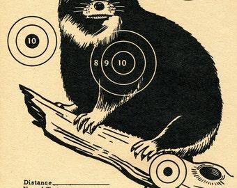 Vintage Shooting Target Racoon II