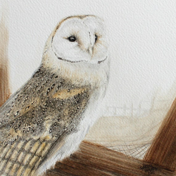 RESERED for Mike - Barn Owl - original watercolour painting