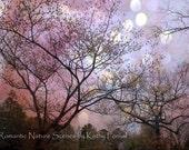 Nature Photography, Fantasy Trees Nature Photos, Fairytale Nature Purple Trees, Purple Lavender Nature Trees Bokeh, Fantasy Nature Photos