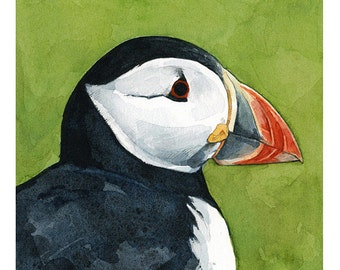 Colorful Puffin Watercolor Painting - Animal art - 5x5 Print
