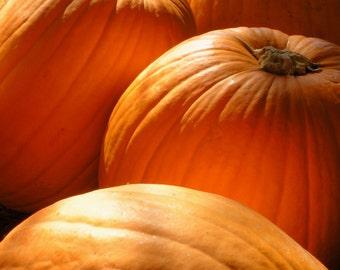 Pumpkins Fall Harvest Pumpkin Orange Autumn Glow Rustic Cabin Lodge Photograph