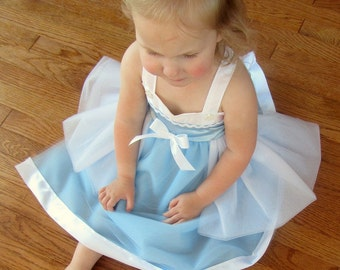 Cinderella Costume Dress: Blue and White lined Princess Birthday Party Dress, tutu dress, easy on and off, adjustable, princess dinner, trip