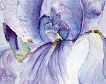 Purple Iris  Watercolor giclee 4x6 Fine Art Home Decor Spring Purple Decor trending