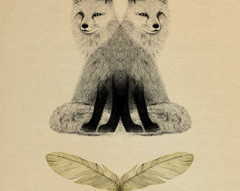 Fox & Feathers - A3 Giclee print