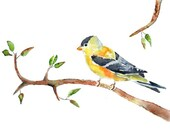 Bird Watercolor Art Print, Baby Girl Nursery Art, Print of Original Watercolor Painting, Yellow Nursery Decor