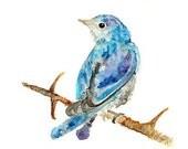 Watercolor Bird Print, Blue, Bird Painting, teal, Bird Wall Decor, Bird Art, watercolor print