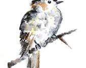Whimsical Bird Art, Watercolor Bird, Print of grey cuckoo bird painting, gender neutral decor, nursery decor - Cuckoo Puff