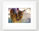 SALE: Nursery Decor, Deer Print, Fine art Photograph, Kids Room, Print 5x7'', Woodland Print, Natural History, Forest Print