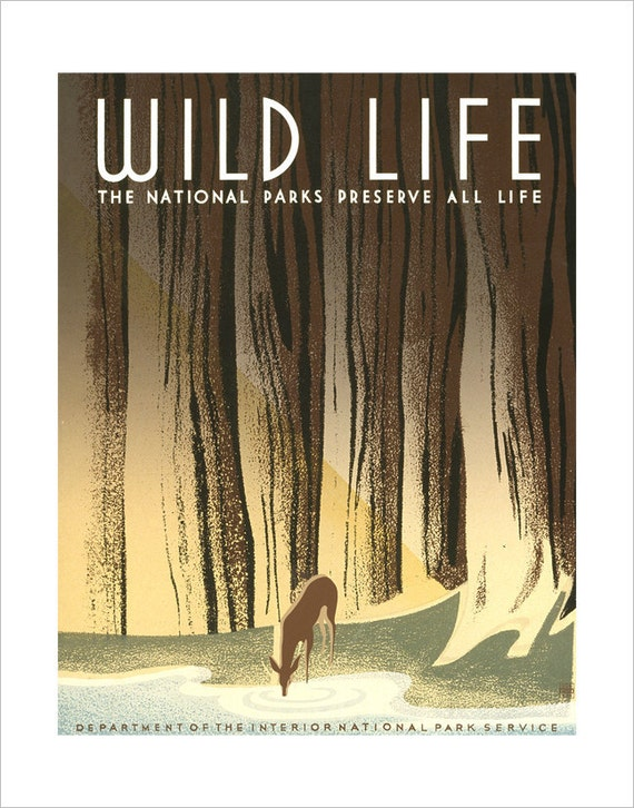 Wildlife Print  - WPA Poster Print - National Parks - 11x14 or 16x20  print