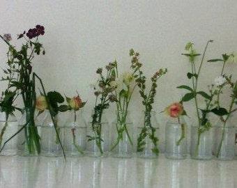 AUTUMN WEDDINGS. Eleven recycled mini milk bottles / specimen vases .Great for weddings / resturants.
