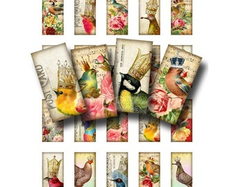 ROYAL FEATHERS Digital Collage Sheet Instant Download for Paper Crafts Jewelry Original Whimsical Altered Art by GalleryCat CS104