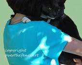 Animal Art Cat Greeting Card Pet Photography Girl in Turquoise Hugs Grey Tuxedo Cat