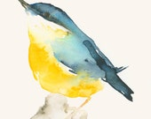 Art Print from Original Painting Blue and Yellow Bird