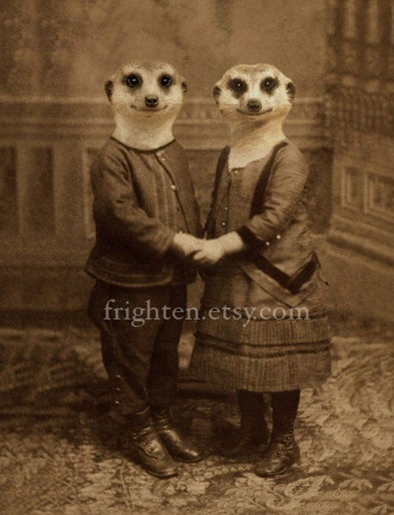 Meerkat Art, Animals in Clothes, Mixed Media Collage, Meerkat Couple, Holding Hands, 5x7 Print, Anthropomorphic
