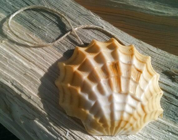 Sea Shell Soap on a Rope - Handmade Soap - Makes a Great Stocking Filler, Stocking Stuffer, Hannukah Gift, Birthday Gift - Lemongrass Oil