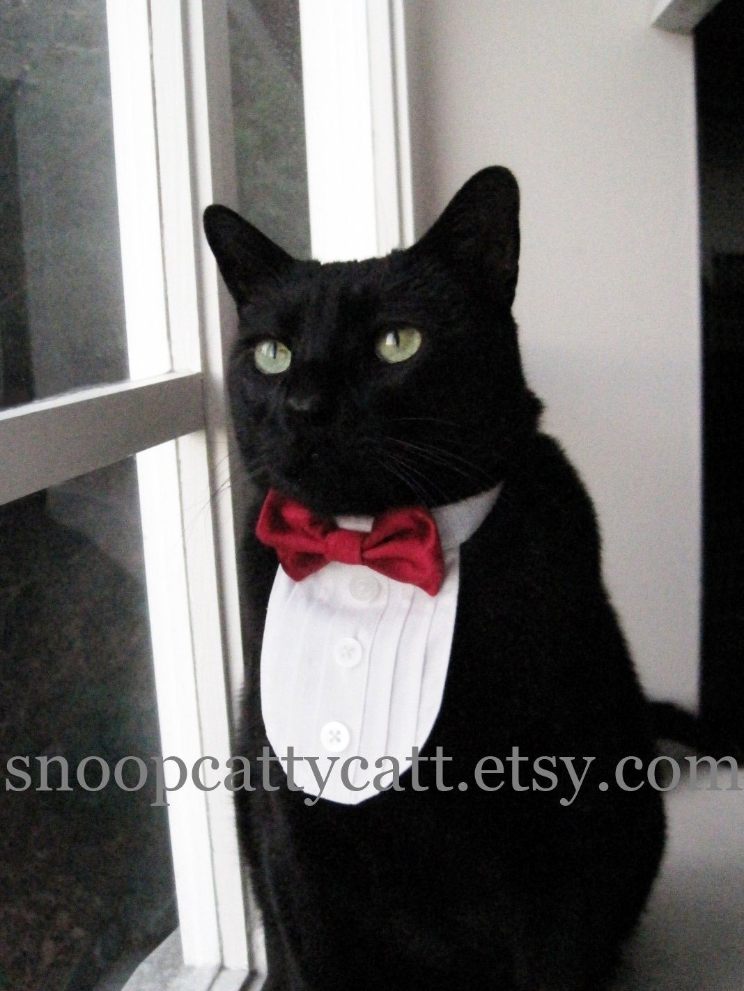 Cat Tuxedo Choose Your Own Bow Tie Solid Satins