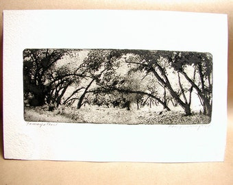 Tamaya Trail, etching, hand pulled intaglio, signed and numbered