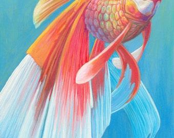 Goldfish No. 3