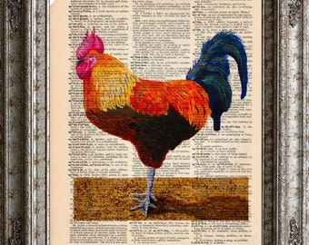 Rooster 2 on Vintage Upcycled Dictionary Art Print Book Art Print Chicken Recycled bookworm gift