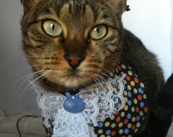 Colorful Dotted Bib by FiercePetFashion