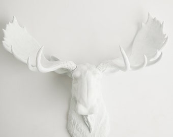 Faux Taxidermy Moose Head In White, The Edmonton, White Animal Head by White Faux Taxidermy