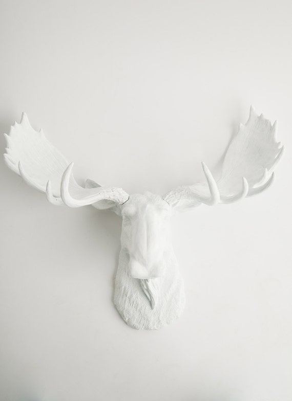 Faux taxidermy moose head in white the edmonton white animal - Fake moose head mount ...