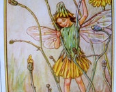 1930s The Cat's Ear FAIRY CICELY Mary BARKER Ideal for Framing