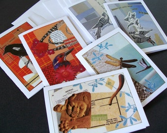 All Occasion Card  Assortment set of 6 images with envelopes bird dragonfly lion collage