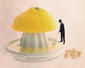 Lemon print, Food Photography,Yellow Kitchen Decor, Kitchen art, Summer, Lemon Photography, Lemon juicer